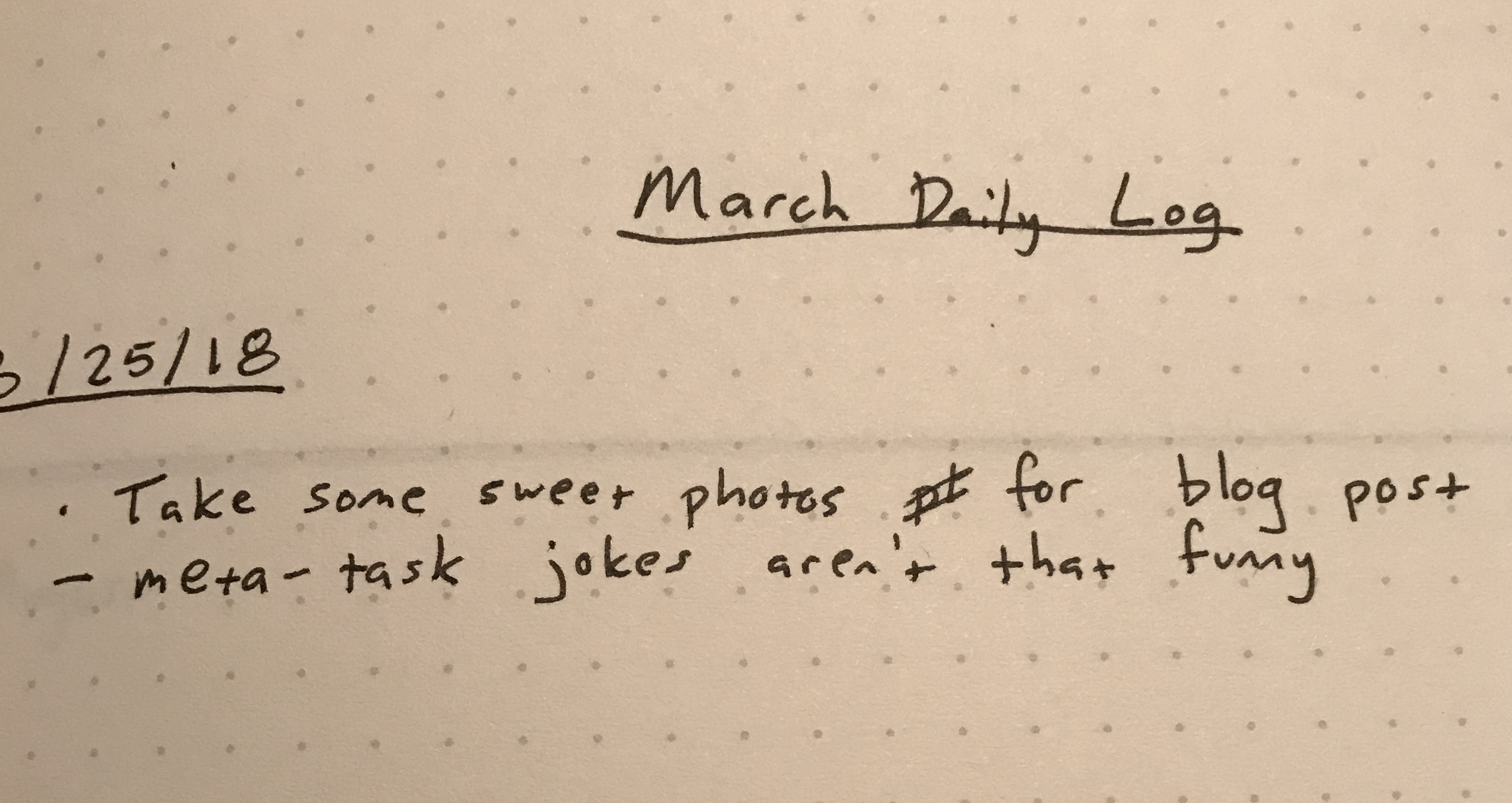 Filled-in Daily Log